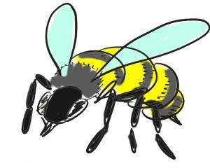 Zu sehen ist eine Biene, die Potenzielles Bienengift für den Stich bereithält